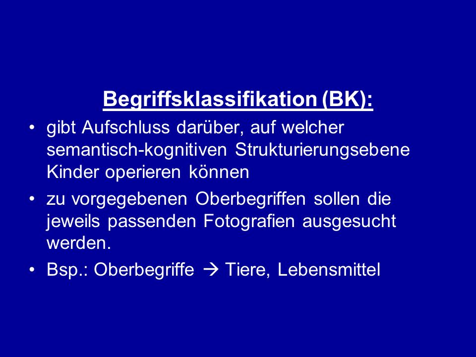 Begriffsklassifikation (BK):
