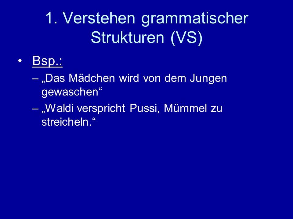1. Verstehen grammatischer Strukturen (VS)