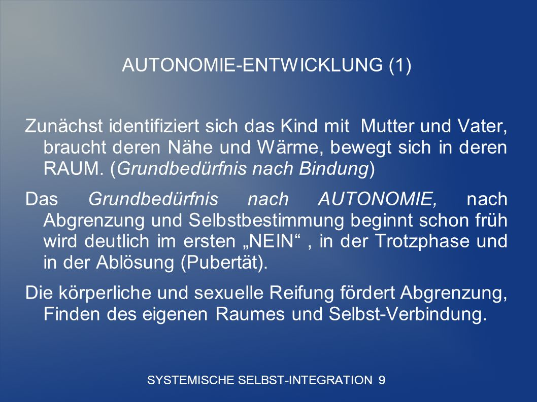SYSTEMISCHE SELBST-INTEGRATION 9