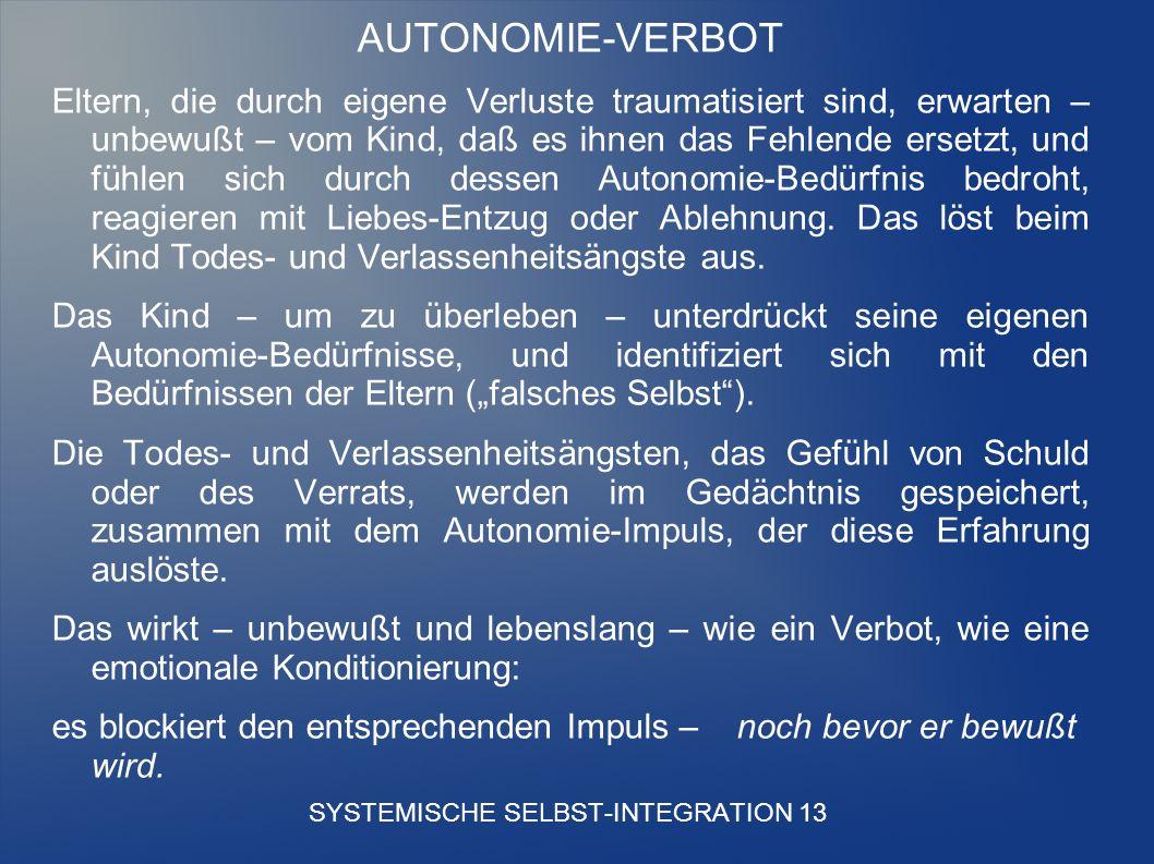 SYSTEMISCHE SELBST-INTEGRATION 13