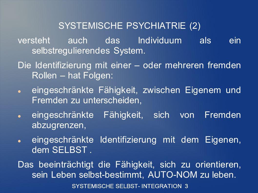 SYSTEMISCHE SELBST- INTEGRATION 3