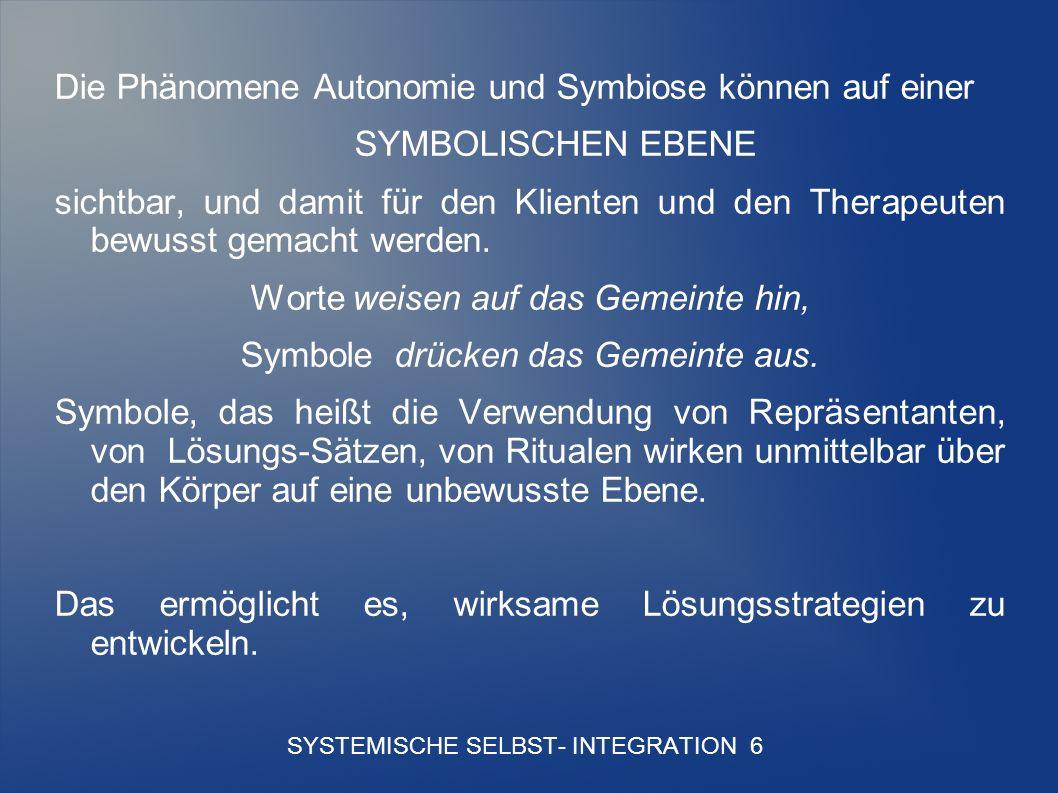 SYSTEMISCHE SELBST- INTEGRATION 6