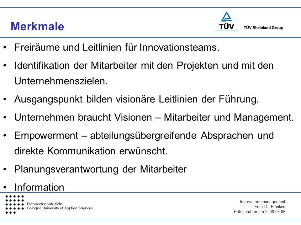Merkmale Freiräume und Leitlinien für Innovationsteams.