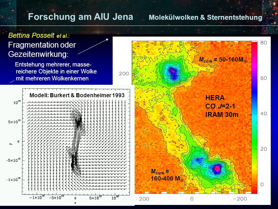 Forschung am AIU Jena Molekülwolken & Sternentstehung