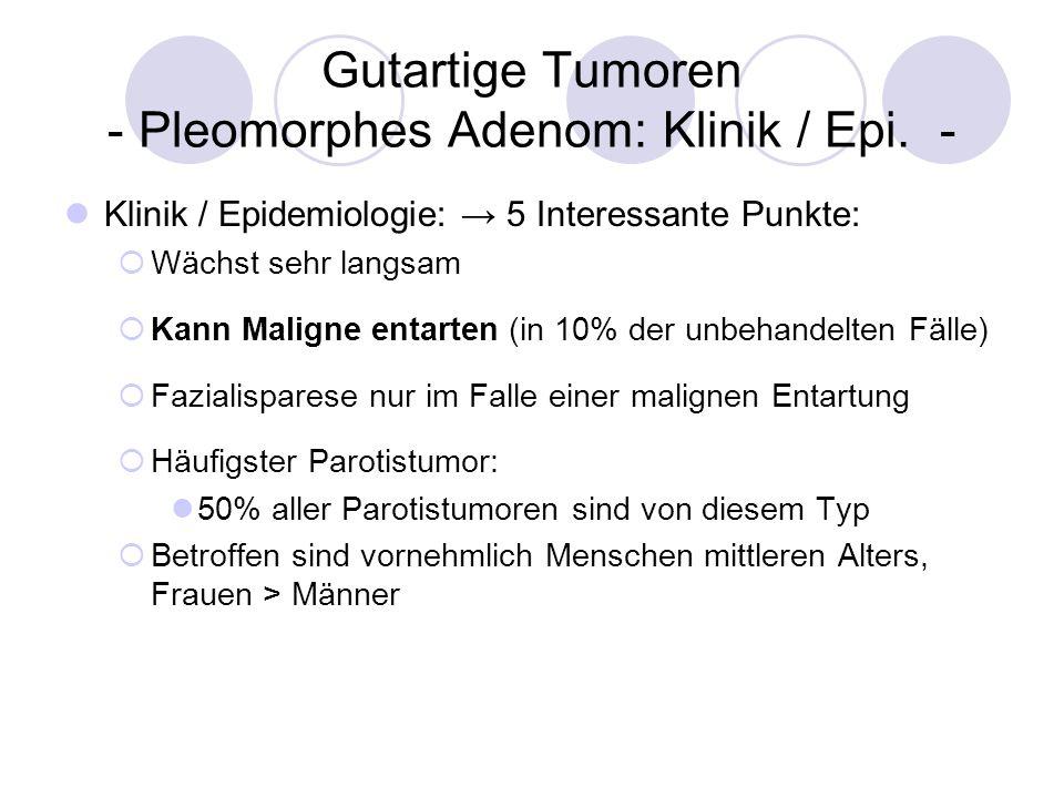 Gutartige Tumoren - Pleomorphes Adenom: Klinik / Epi. -