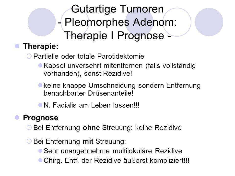 Gutartige Tumoren - Pleomorphes Adenom: Therapie I Prognose -