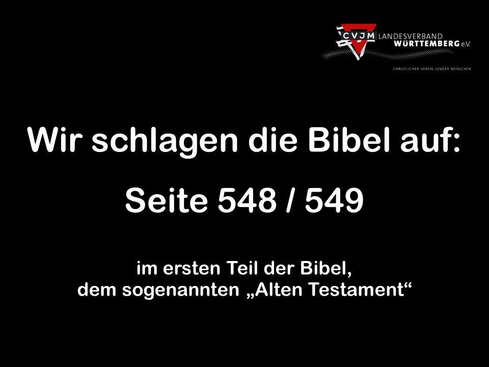 Wir schlagen die Bibel auf: Seite 548 / 549