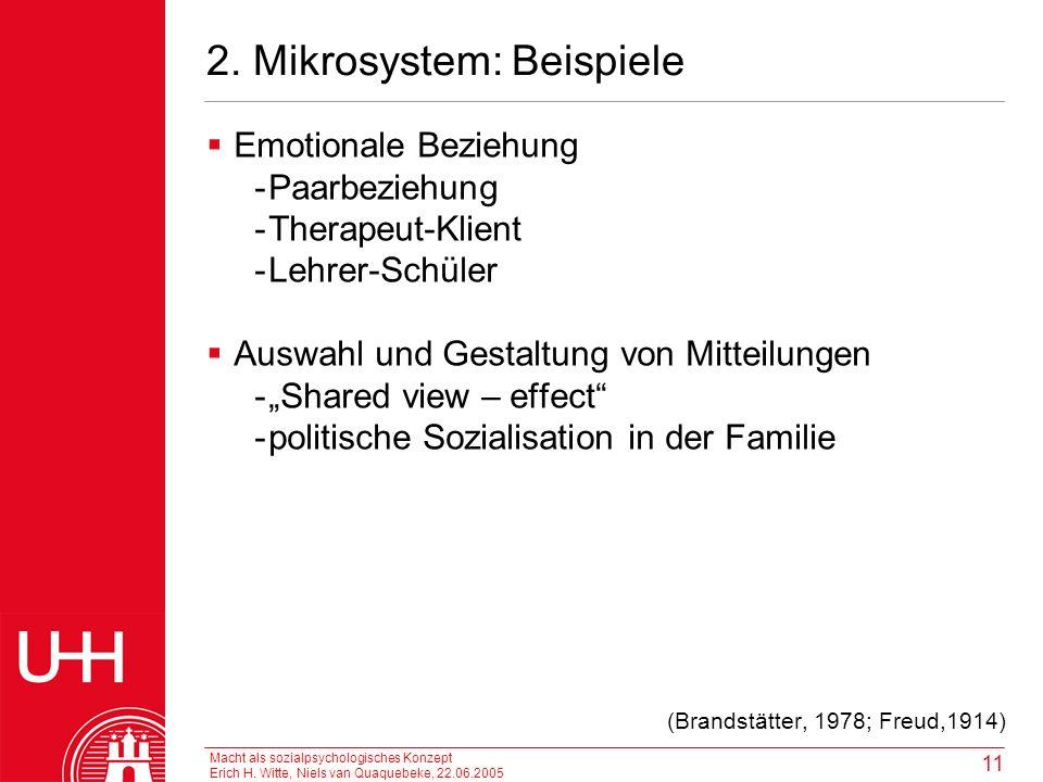 2. Mikrosystem: Beispiele
