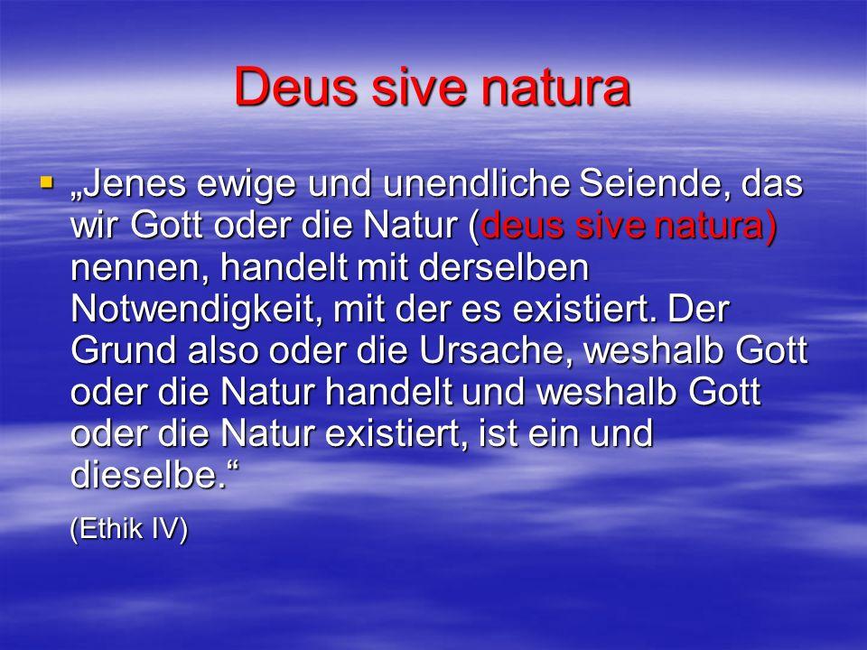 Deus sive natura