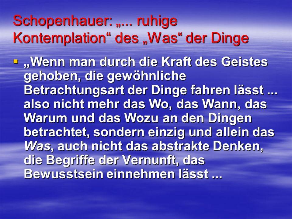 """Schopenhauer: """"... ruhige Kontemplation des """"Was der Dinge"""