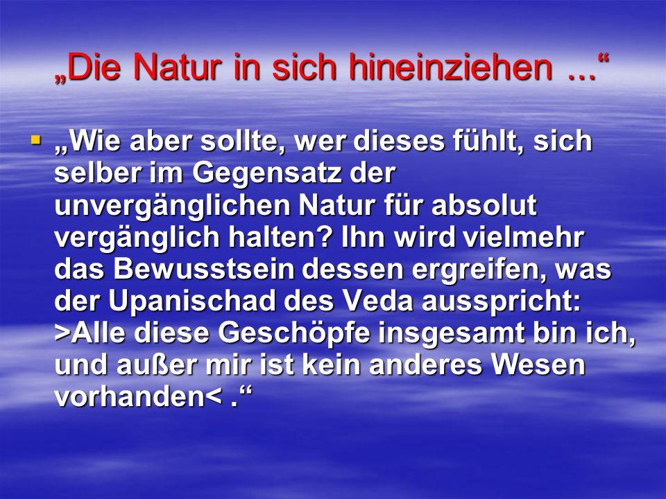 """""""Die Natur in sich hineinziehen ..."""