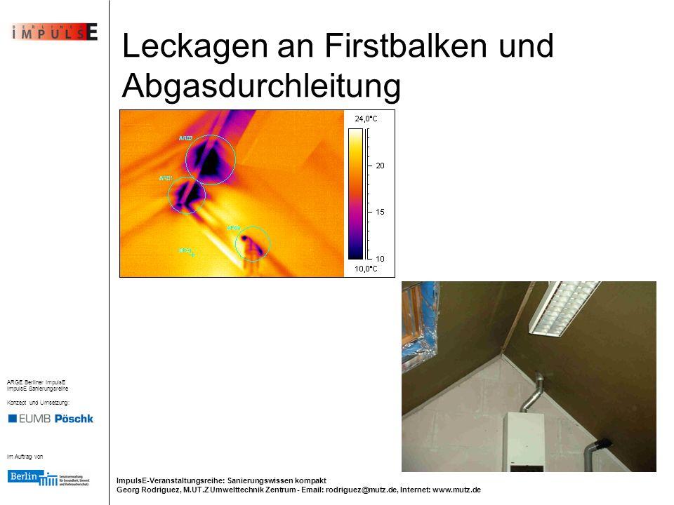 Leckagen an Firstbalken und Abgasdurchleitung