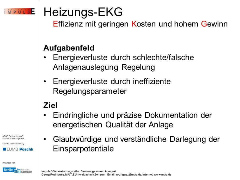 Heizungs-EKG Effizienz mit geringen Kosten und hohem Gewinn