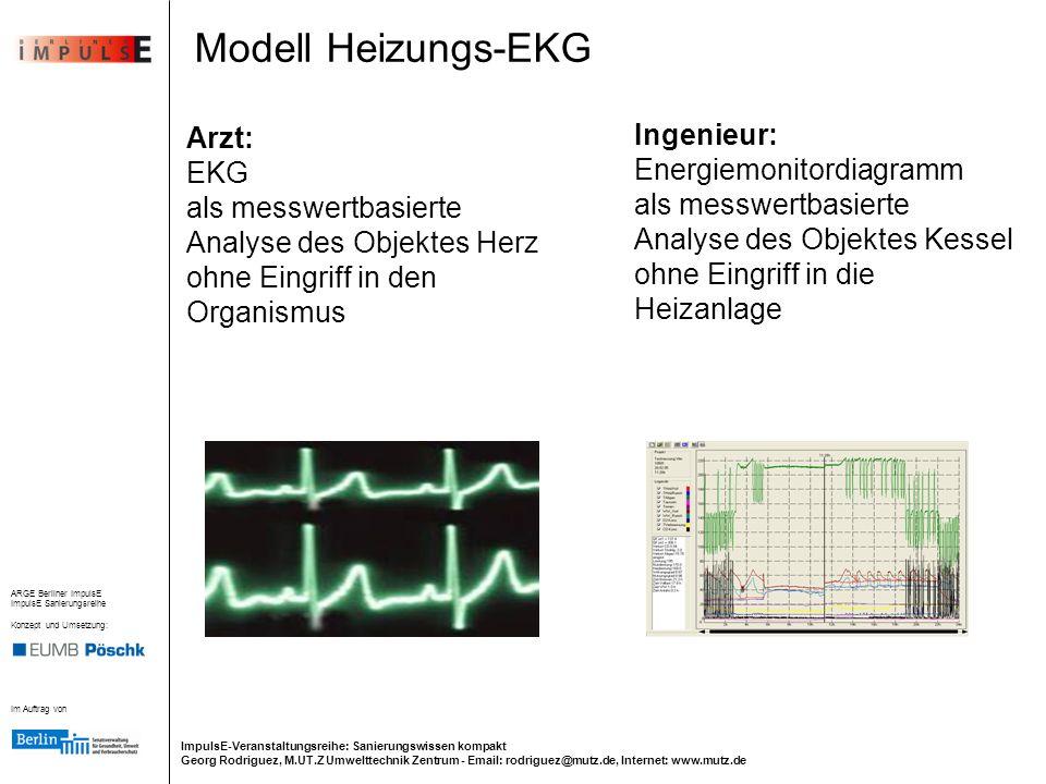 Modell Heizungs-EKG Ingenieur: Arzt: Energiemonitordiagramm EKG