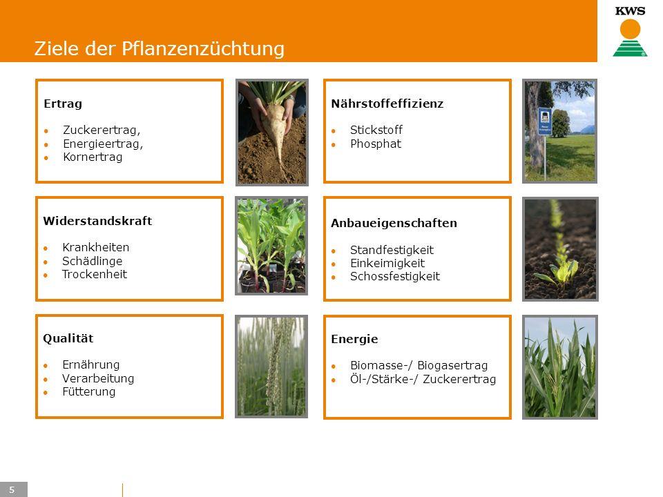 Ziele der Pflanzenzüchtung
