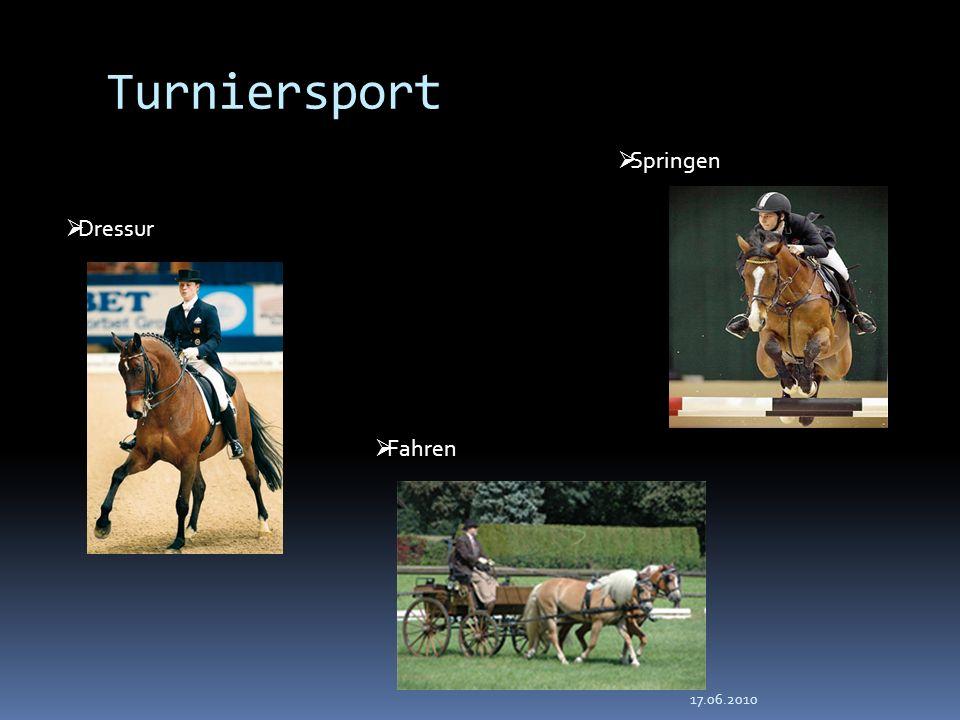 Turniersport Springen Dressur Fahren 17.06.2010