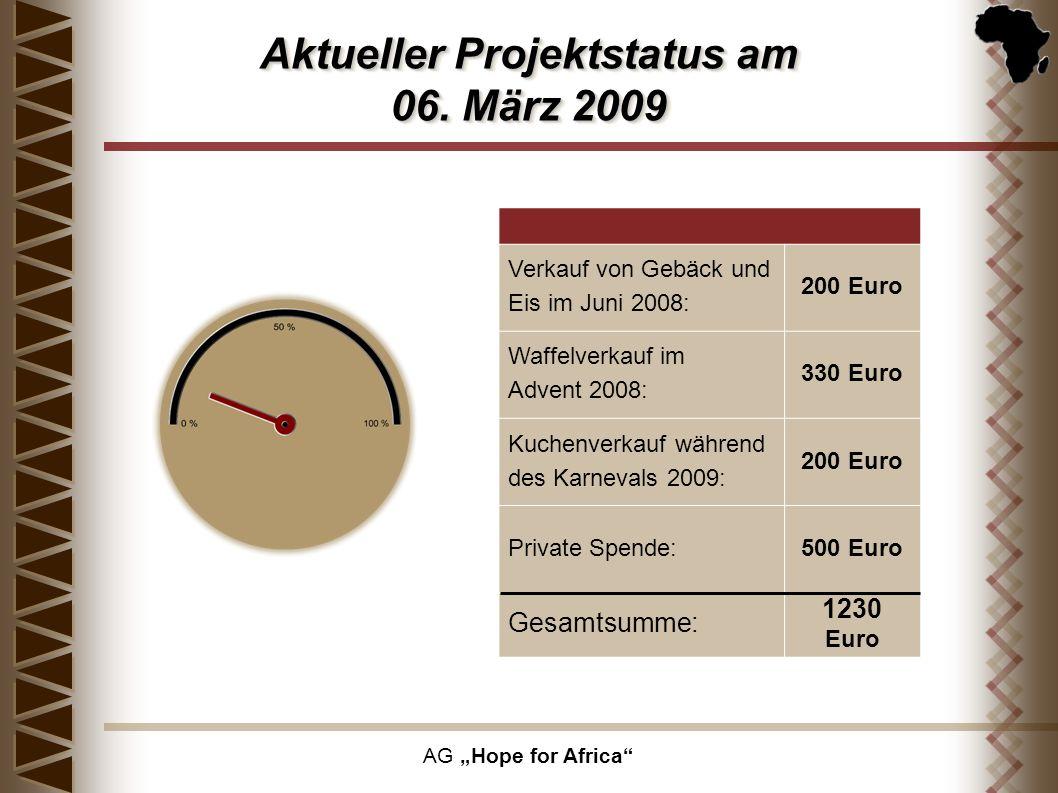 Aktueller Projektstatus am 06. März 2009