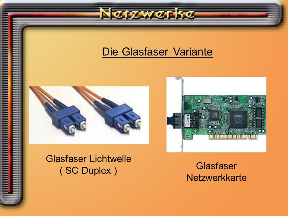 Die Glasfaser Variante