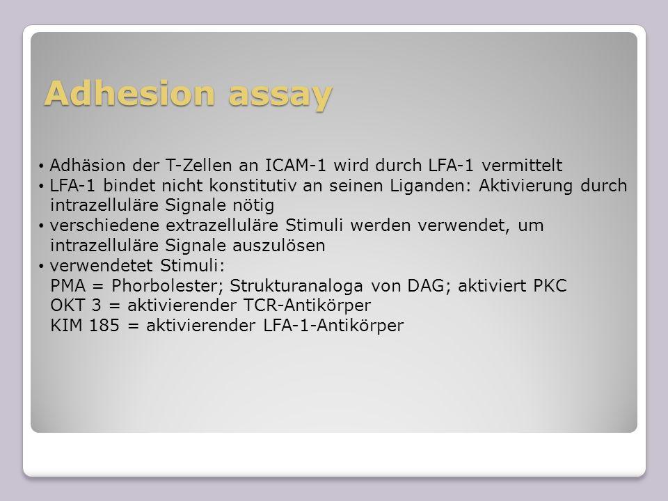 Adhesion assayAdhäsion der T-Zellen an ICAM-1 wird durch LFA-1 vermittelt. LFA-1 bindet nicht konstitutiv an seinen Liganden: Aktivierung durch.