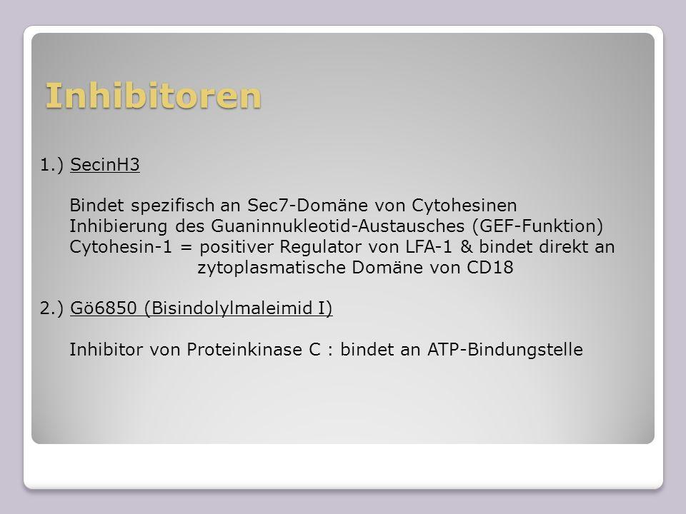 Inhibitoren1.) SecinH3. Bindet spezifisch an Sec7-Domäne von Cytohesinen. Inhibierung des Guaninnukleotid-Austausches (GEF-Funktion)