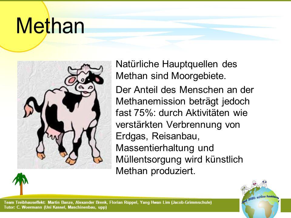 Natürliche Hauptquellen des Methan sind Moorgebiete.