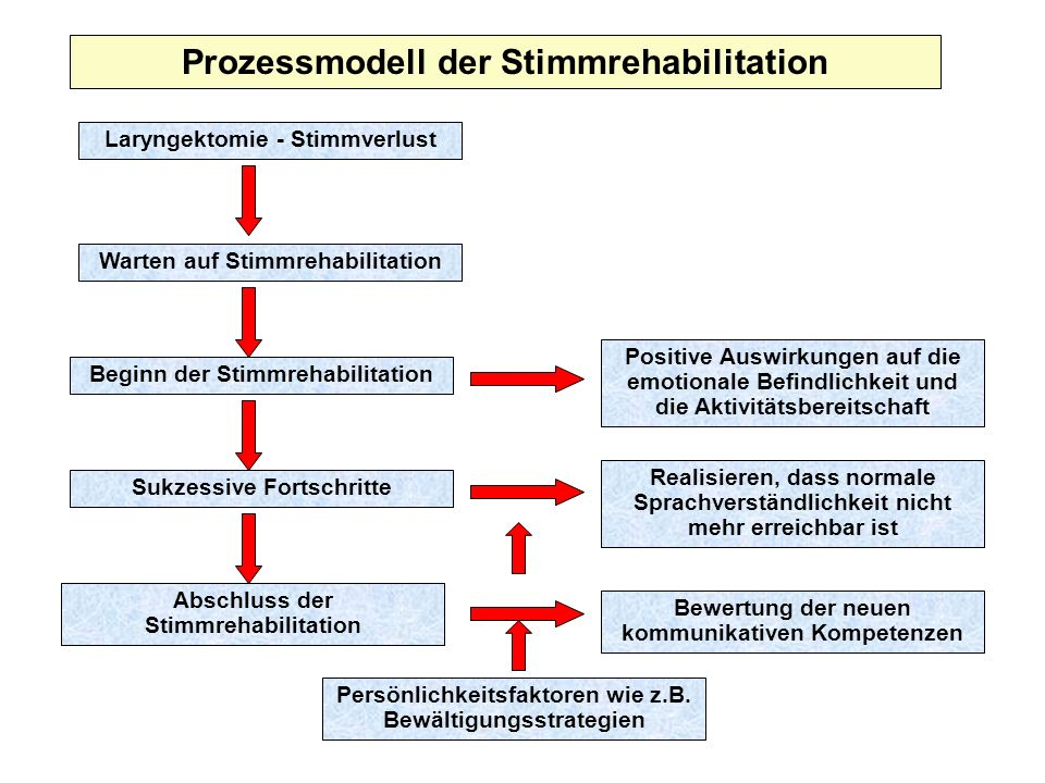 Prozessmodell der Stimmrehabilitation