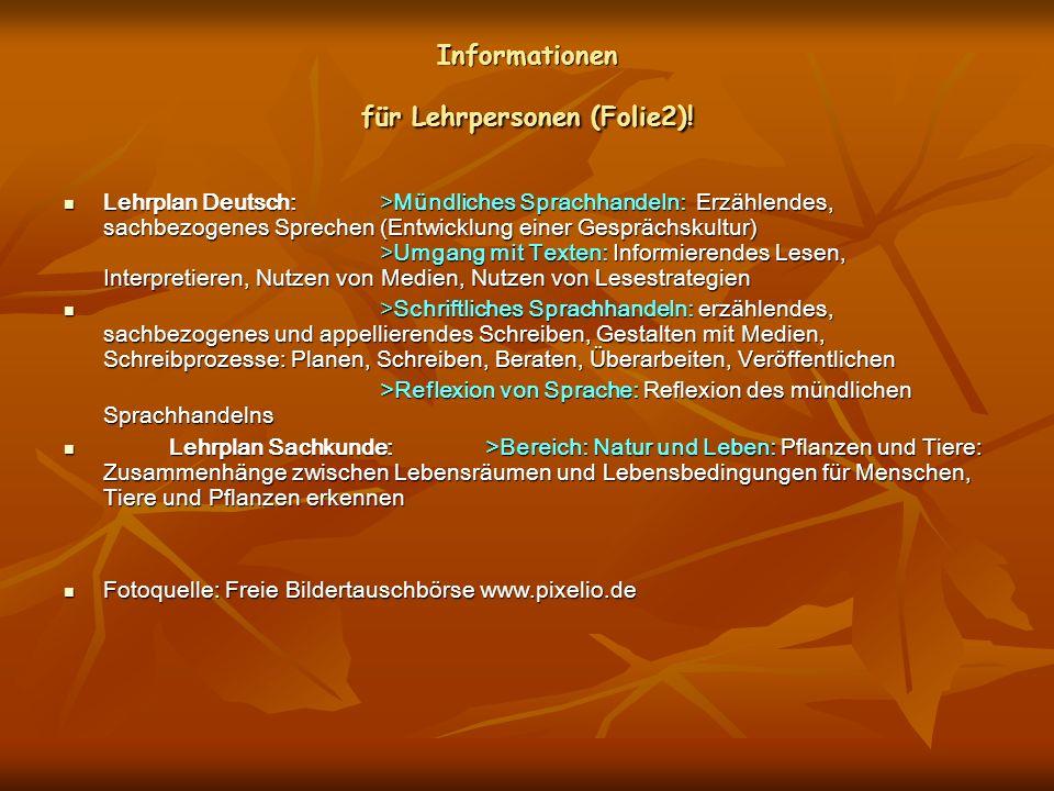 Informationen für Lehrpersonen (Folie2)!