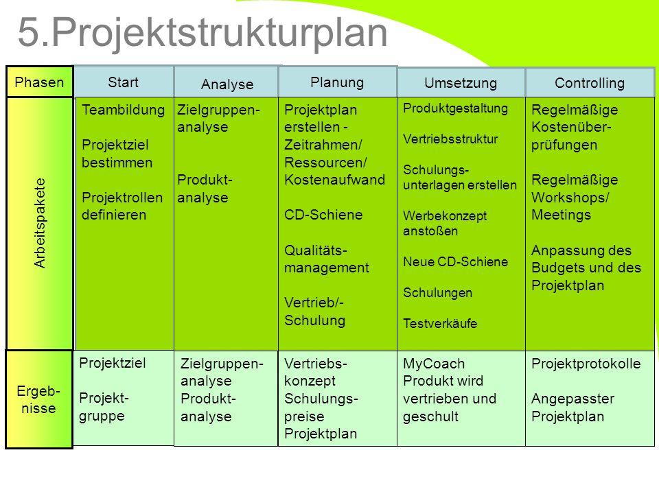 5.Projektstrukturplan Phasen Start Analyse Planung Umsetzung