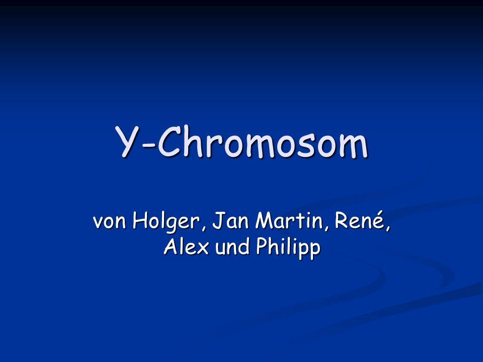 von Holger, Jan Martin, René, Alex und Philipp