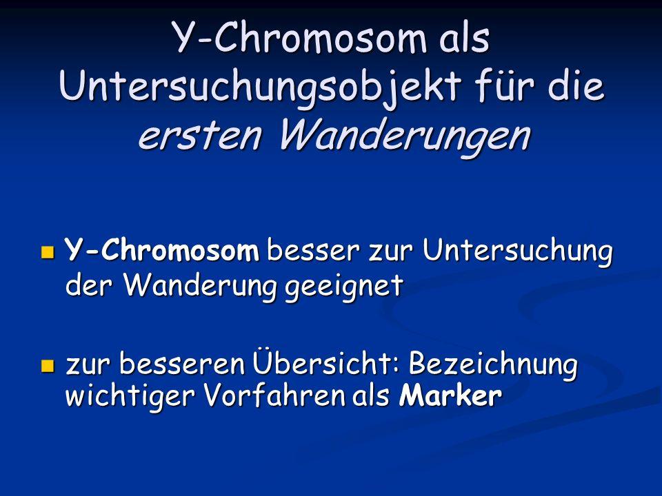Y-Chromosom als Untersuchungsobjekt für die ersten Wanderungen