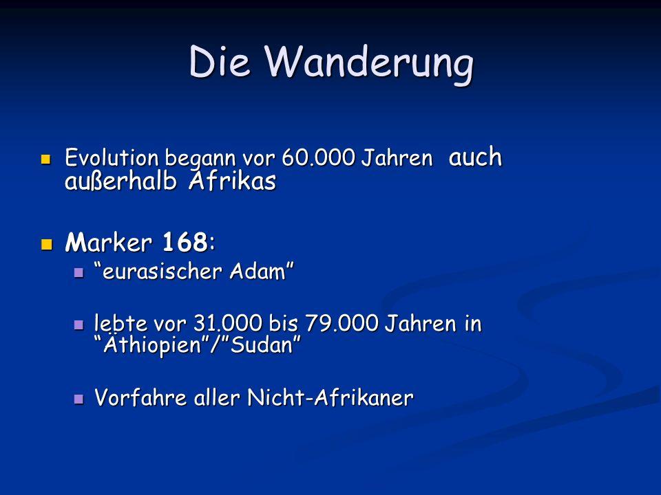 Die Wanderung Evolution begann vor 60.000 Jahren auch außerhalb Afrikas. Marker 168: eurasischer Adam