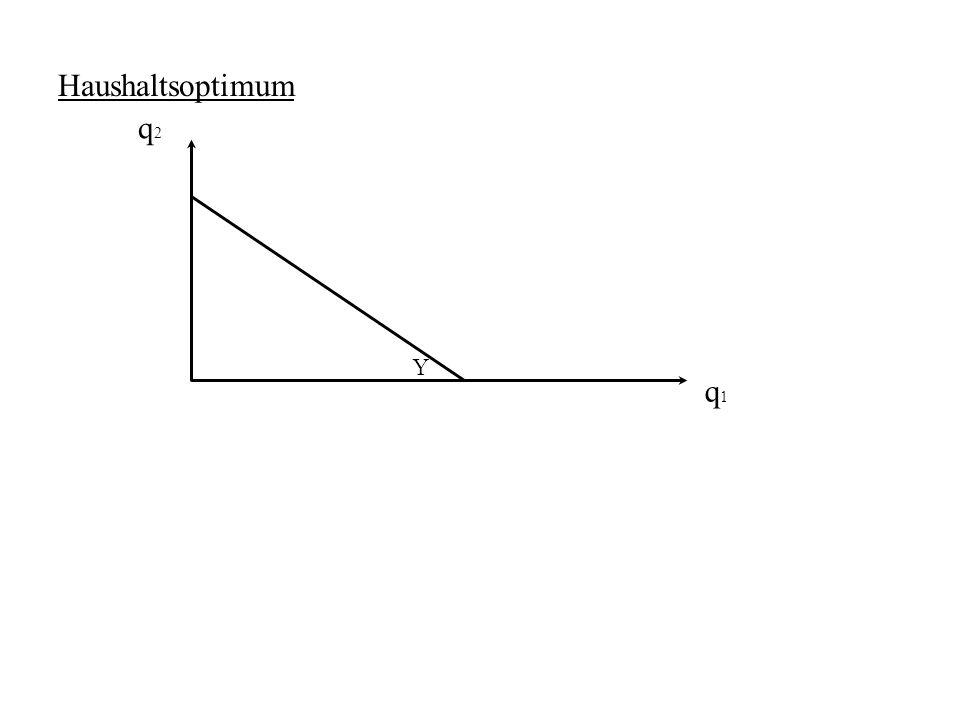 Haushaltsoptimum q2 Y q1