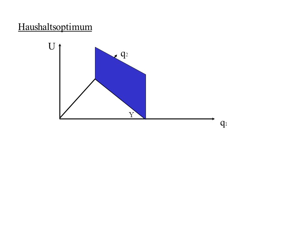 Haushaltsoptimum U q2 Y q1