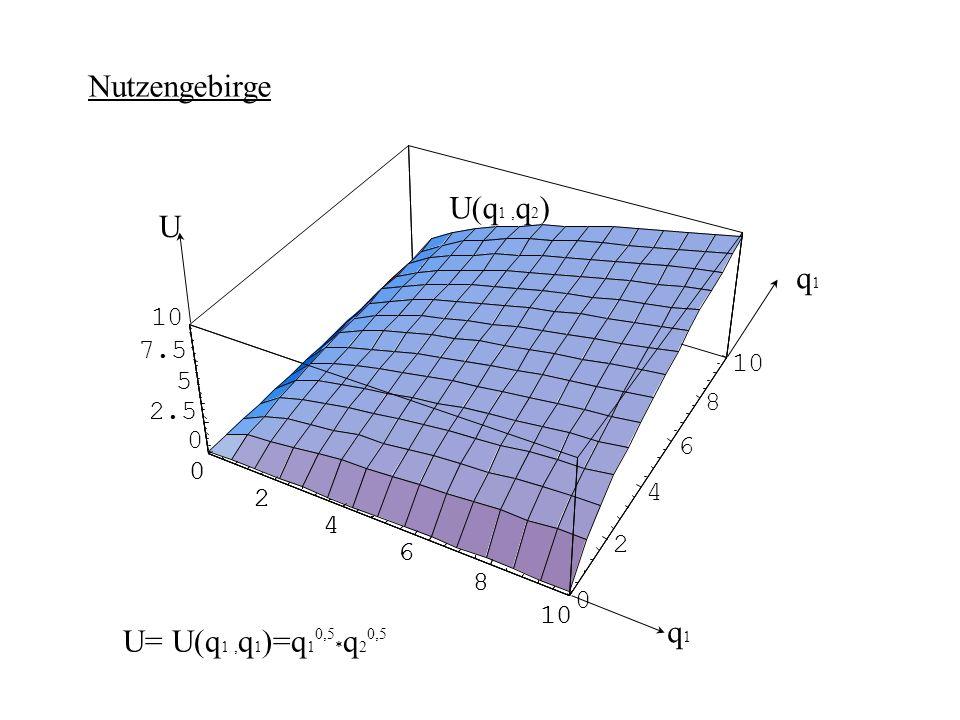 Nutzengebirge U(q1 ,q2) U q1 q1 U= U(q1 ,q1)=q1 *q2 10 7.5 10 5 8 2.5