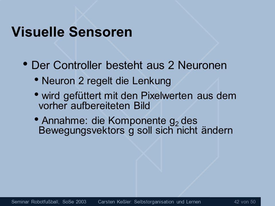 Visuelle Sensoren Der Controller besteht aus 2 Neuronen