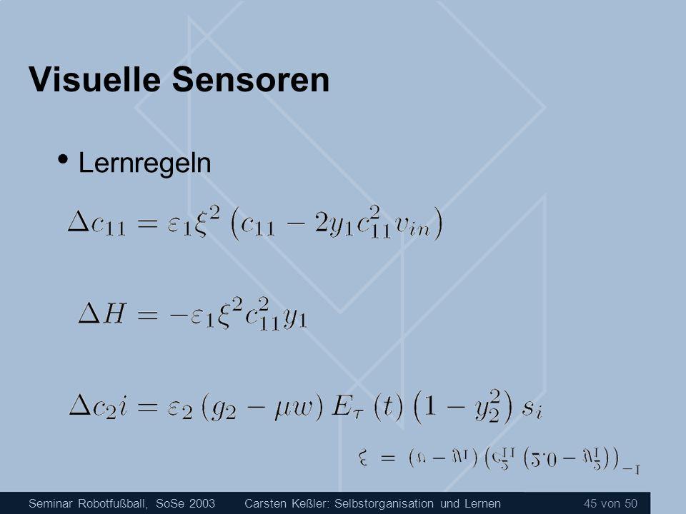 Visuelle Sensoren Lernregeln
