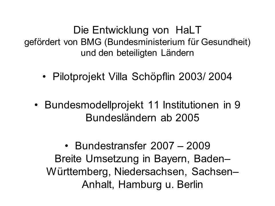 Pilotprojekt Villa Schöpflin 2003/ 2004
