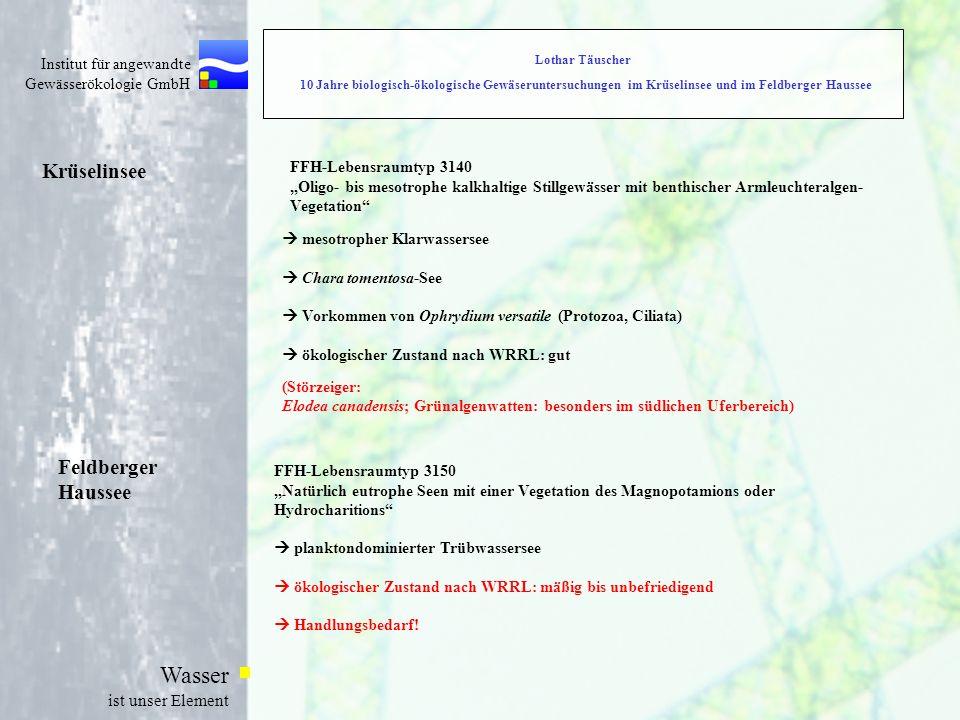 Krüselinsee Feldberger Haussee FFH-Lebensraumtyp 3140