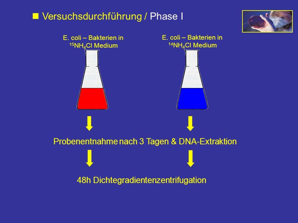  Versuchsdurchführung / Phase I