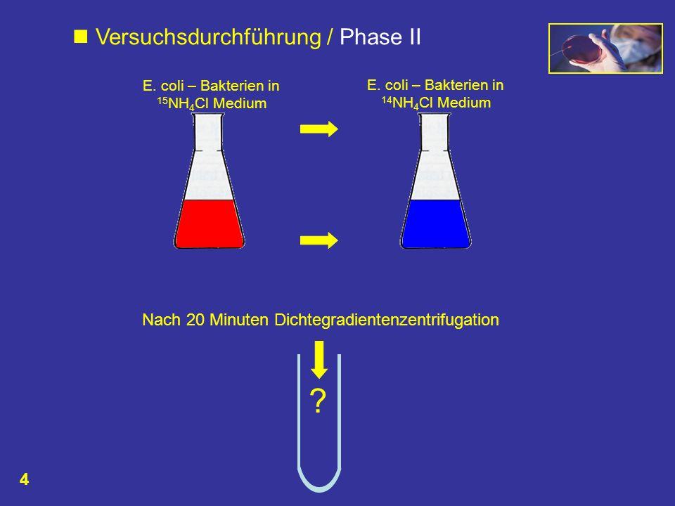  Versuchsdurchführung / Phase II