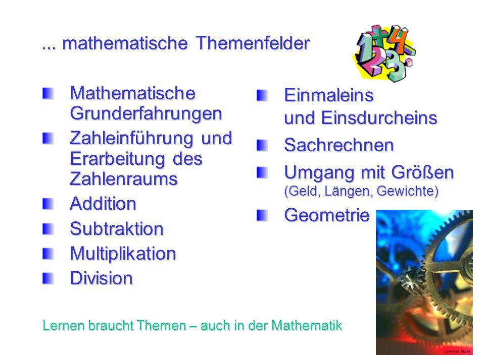 ... mathematische Themenfelder