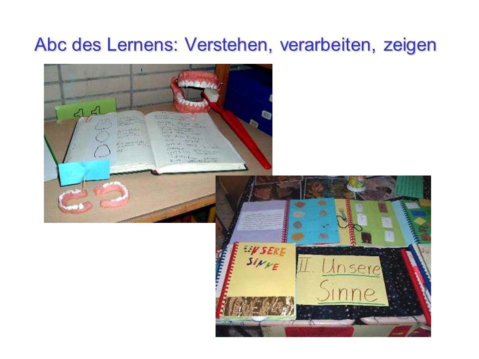 Abc des Lernens: Verstehen, verarbeiten, zeigen