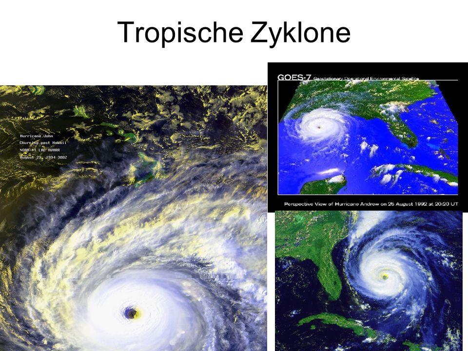 Tropische Zyklone