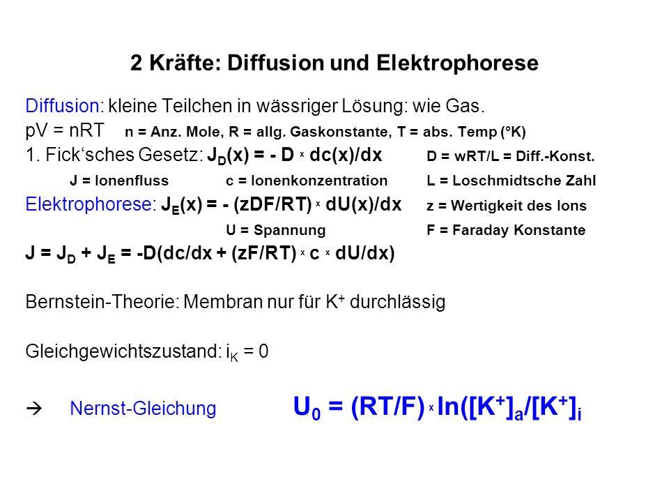 2 Kräfte: Diffusion und Elektrophorese