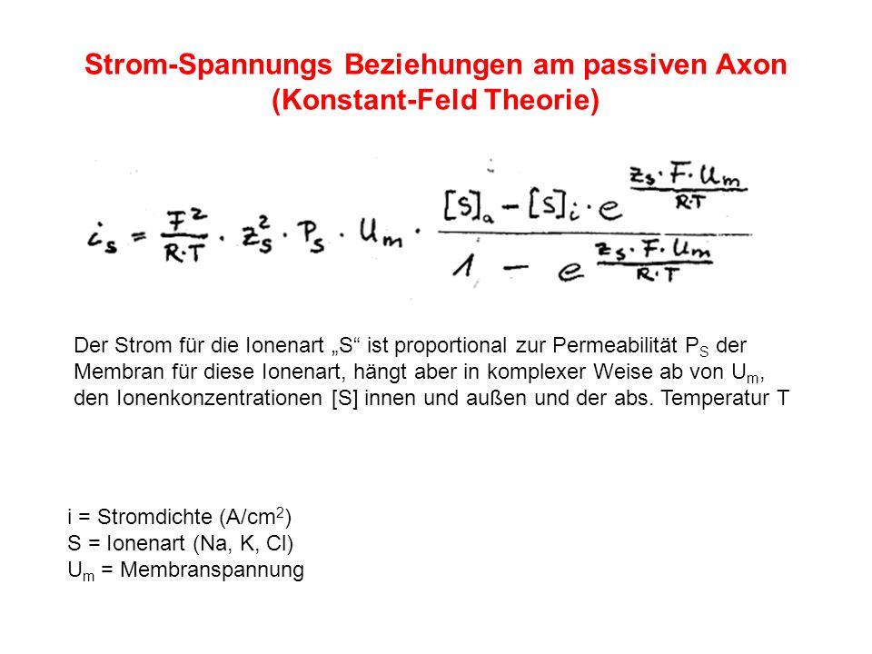 Strom-Spannungs Beziehungen am passiven Axon (Konstant-Feld Theorie)