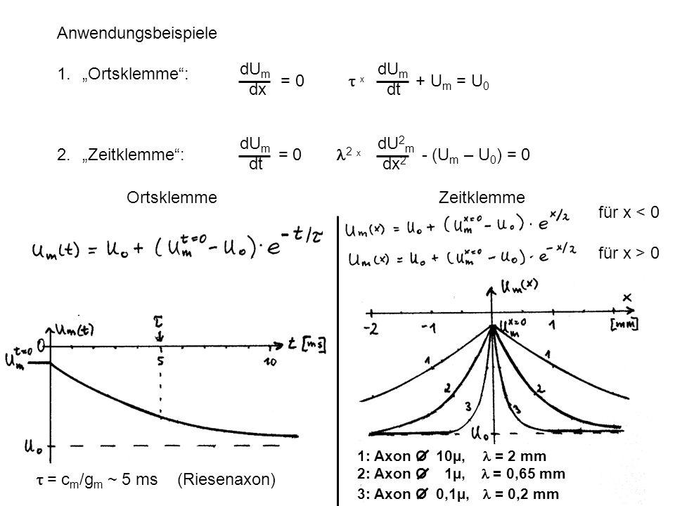 """2. """"Zeitklemme : = 0 l2 x - (Um – U0) = 0 dUm dx dUm dt"""