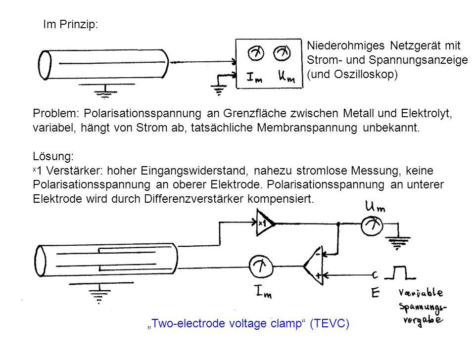 Niederohmiges Netzgerät mit Strom- und Spannungsanzeige