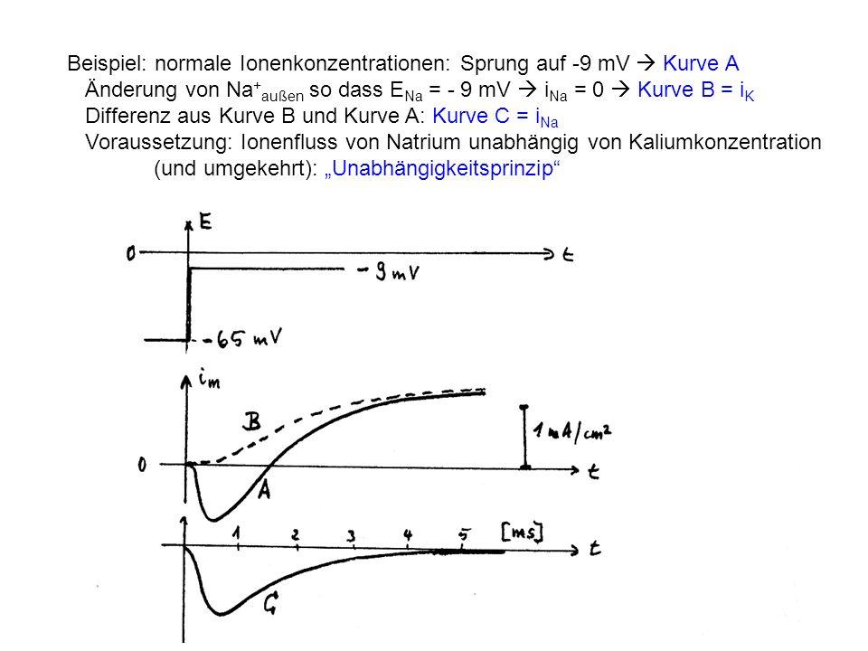 Beispiel: normale Ionenkonzentrationen: Sprung auf -9 mV  Kurve A
