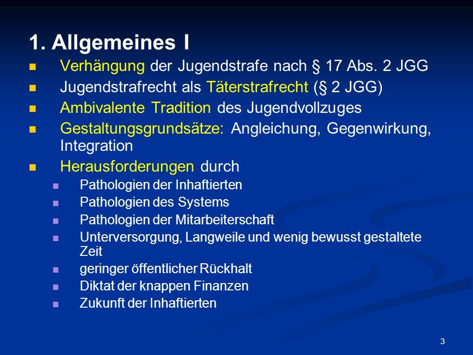 1. Allgemeines I Verhängung der Jugendstrafe nach § 17 Abs. 2 JGG