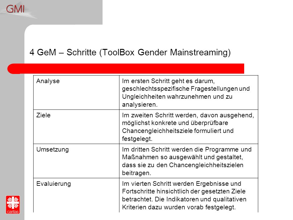 4 GeM – Schritte (ToolBox Gender Mainstreaming)